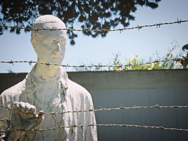 Le camp de concentration du Covid-19 - Suzanne D. Jennings