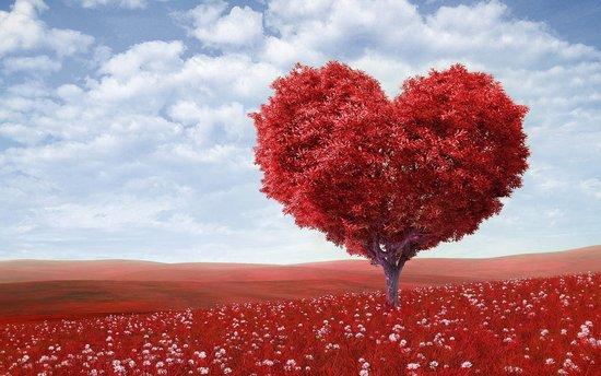 Vivre la St-Valentin en Hautes Fréquences !