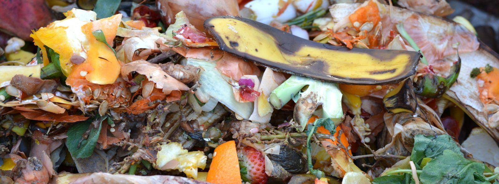 Composter sans mauvaises odeurs  Est-ce vraiment Possible ?
