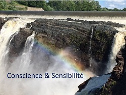 Conscience & Sensibilité