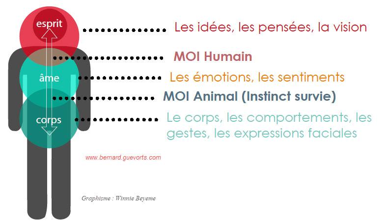 Citations, réflexion, inspiration sur les nouvelles habitudes 41/2019