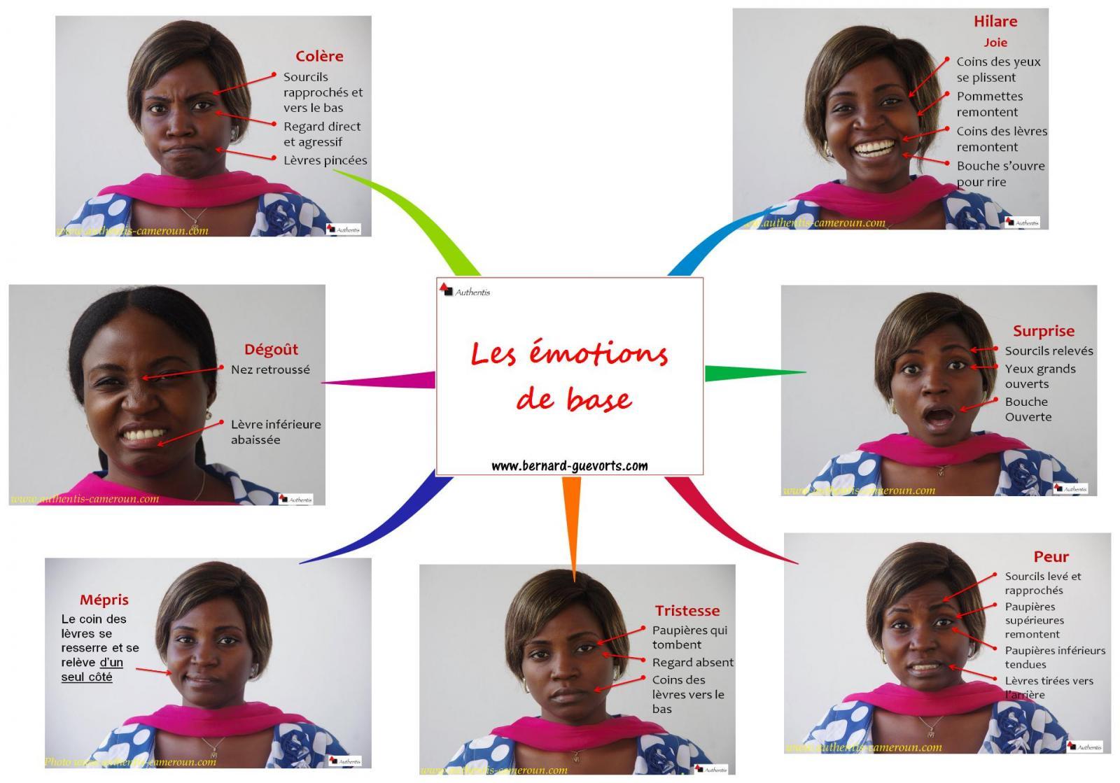 Comment reconnaître les sept émotions de base - Mind Mapping synthèse
