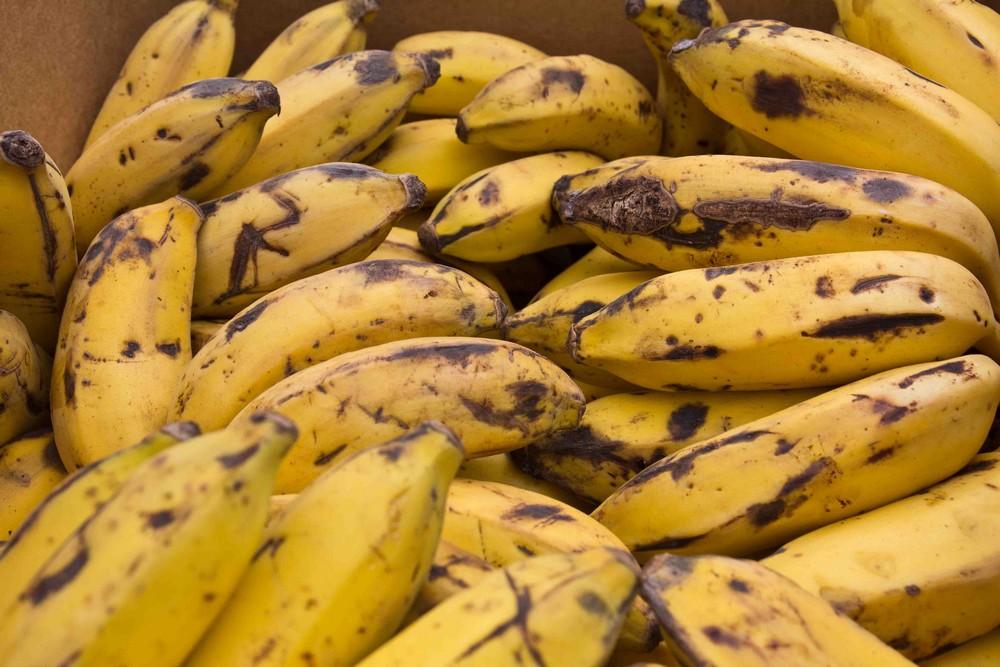 Moi malin, moi manger banane