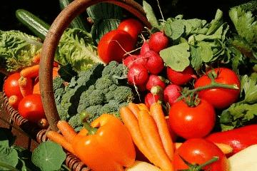 Composition régime végétalien végan