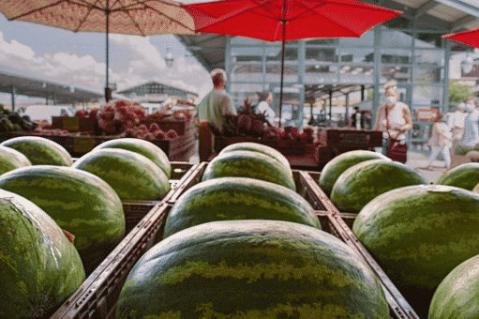Étale de marché, pastèques