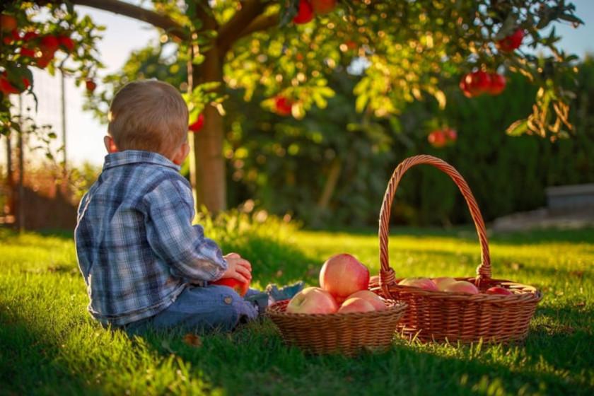 Immanquablement, l'enfant est amené à tourner le dos à ses aspirations profondes car elles ne trouvent pas, dans notre civilisation contemporaine, l'accueil que la nature leur a prévu.
