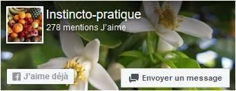 Page facebook Instincto-Pratique