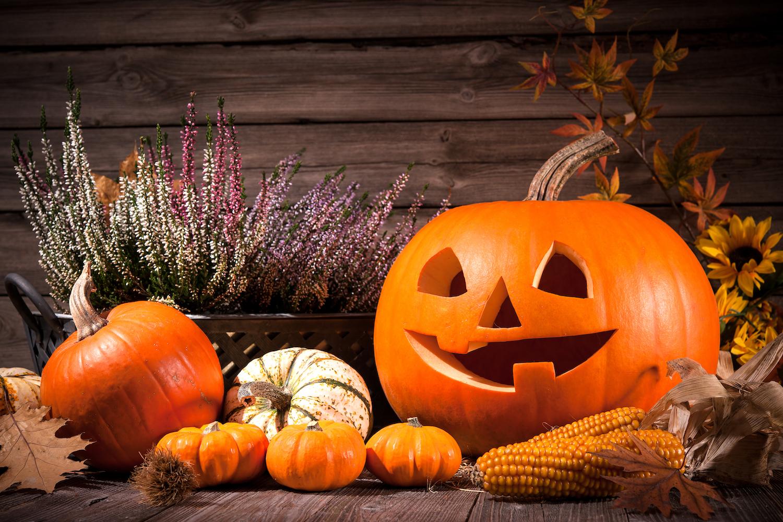 Repas d'Halloween | Idées pour un menu diablement gourmand et équilibré