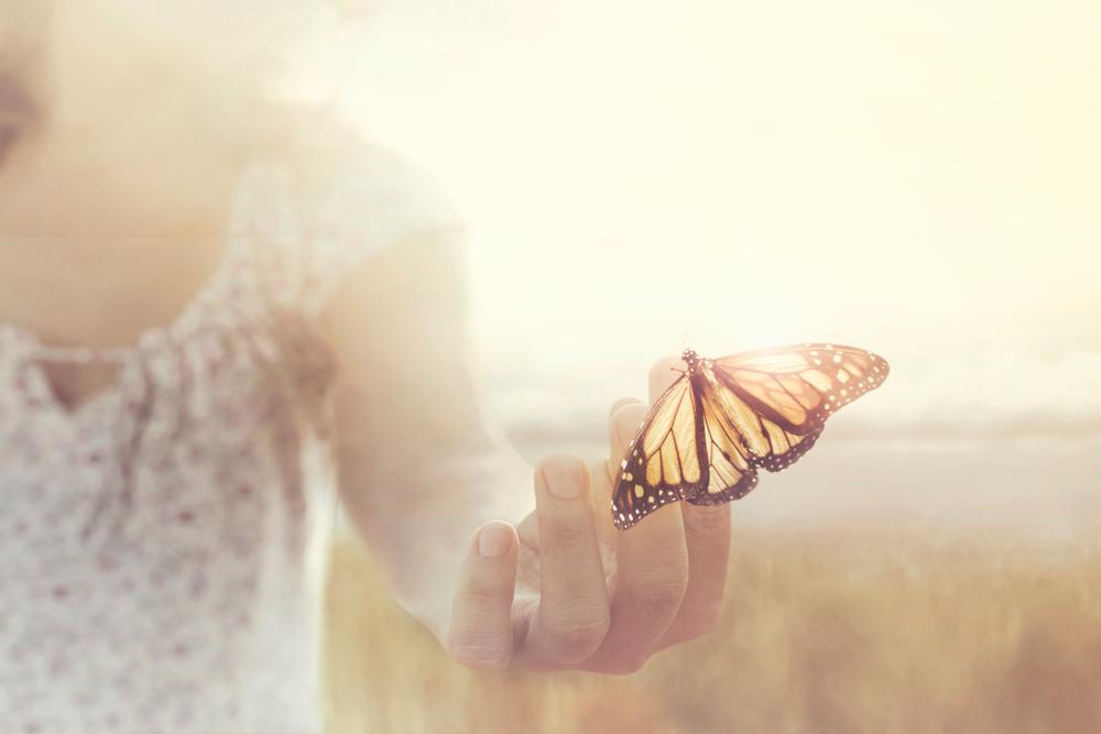 Comment les Habitudes peuvent Changer ta Vie ?