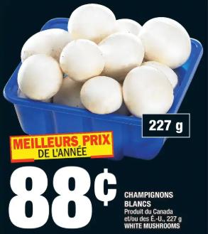 Champignons Blancs du 19 au 25 mars 2020