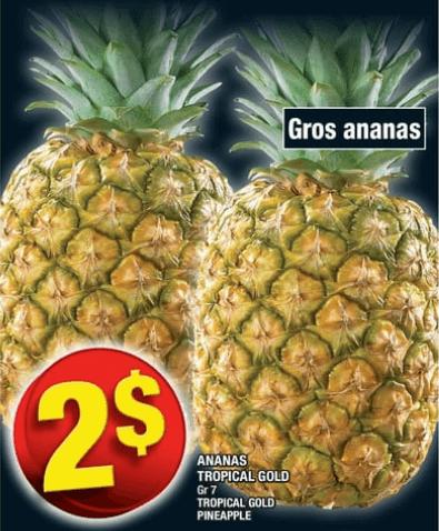 Ananas Tropical Gold du 19 au 25 septembre 2019