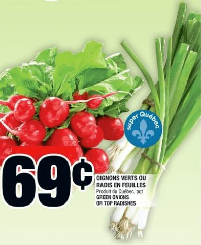 Oignons Verts ou Radis en Feuilles du 27 au 3 juillet 2019