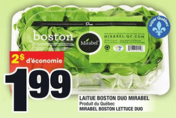 Laitue Boston Duo Mirabel du 28 au 3 juin 2020
