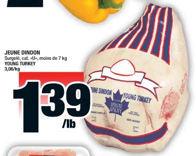 Jeune Dindon du 28 au 4 décembre 2019