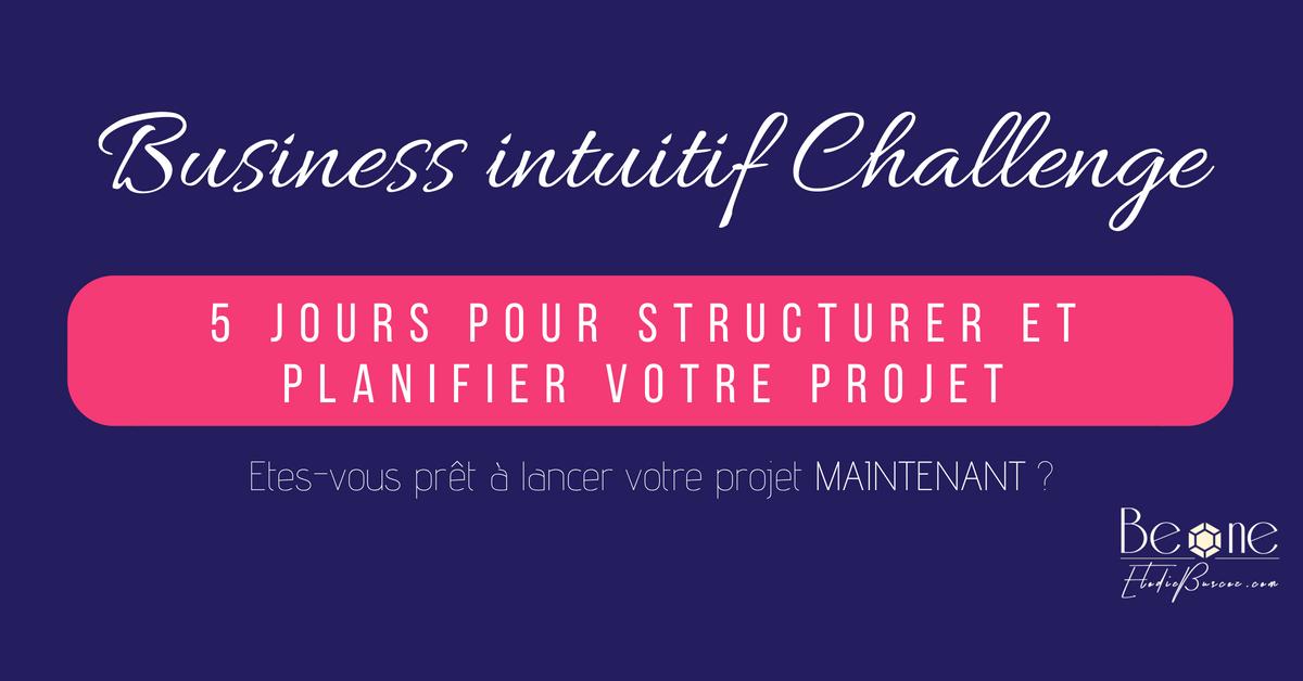 Challenge BE ONE Elodie Buscoz - Business intuitif et Capitalisme conscient - Création entreprise et gestion de projet