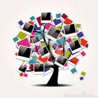 Comment créer un arbre généalogie ?