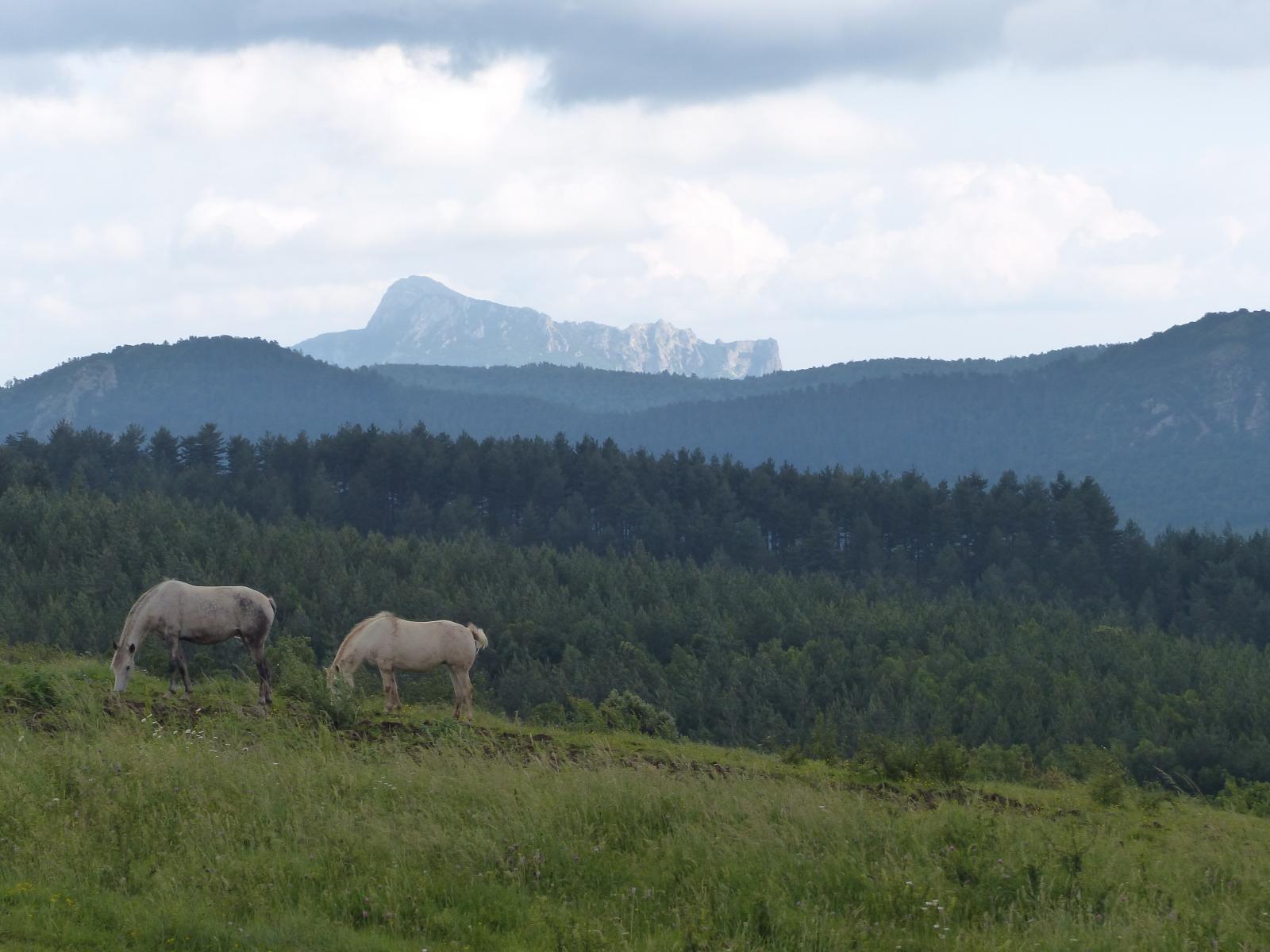Vue de la Frau Haute (près de Peyrolles)