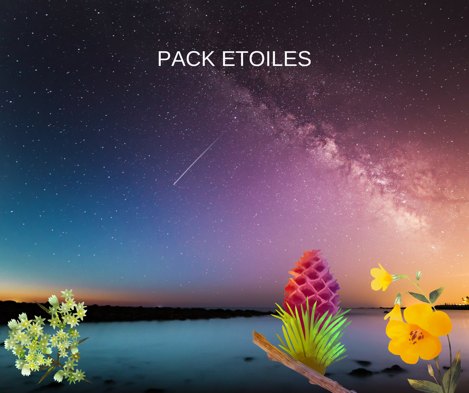 bc pack 3 ateliers etoiles