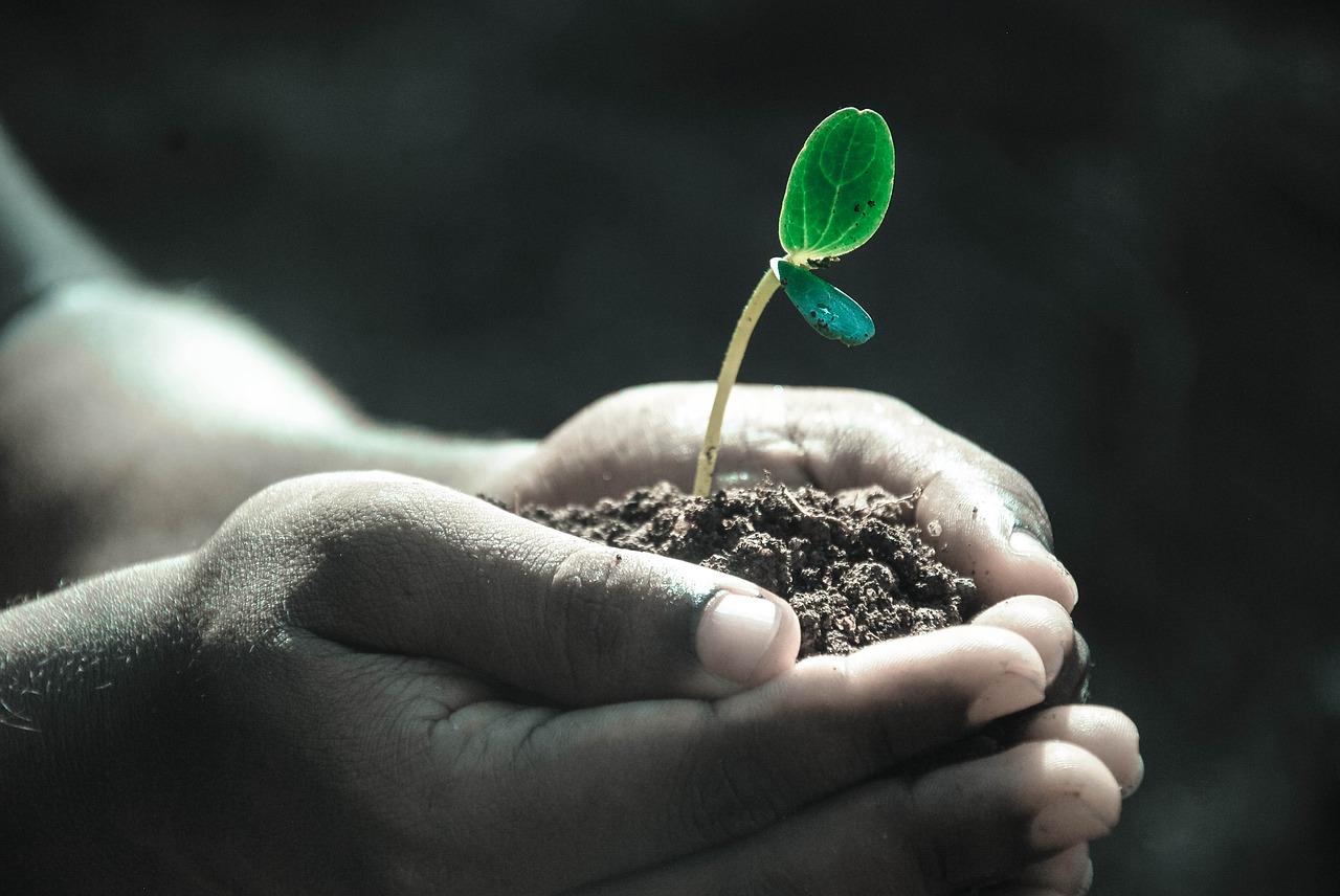 Concilier Bien-être et Travail: fantasme ou opportunité ?