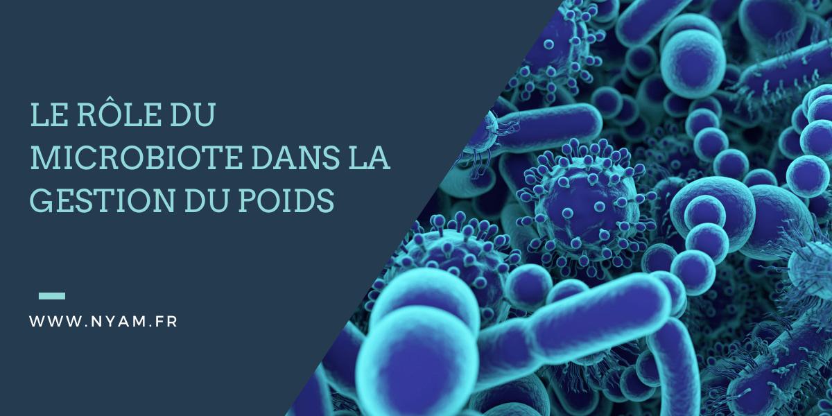 Le rôle du microbiote dans la gestion du poids