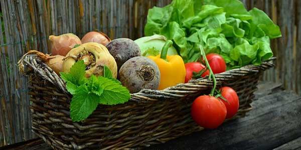Quelle est la différence entre un régime et un rééquilibrage alimentaire ?