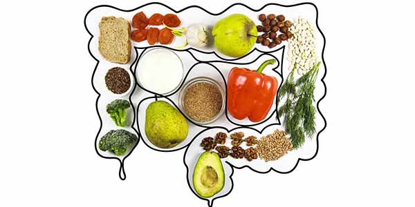 3 conseils d'un naturopathe pour des intestins en santé