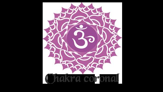 chakra de la couronne