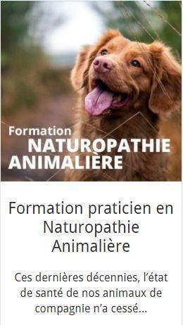 naturopathe animalier - formation