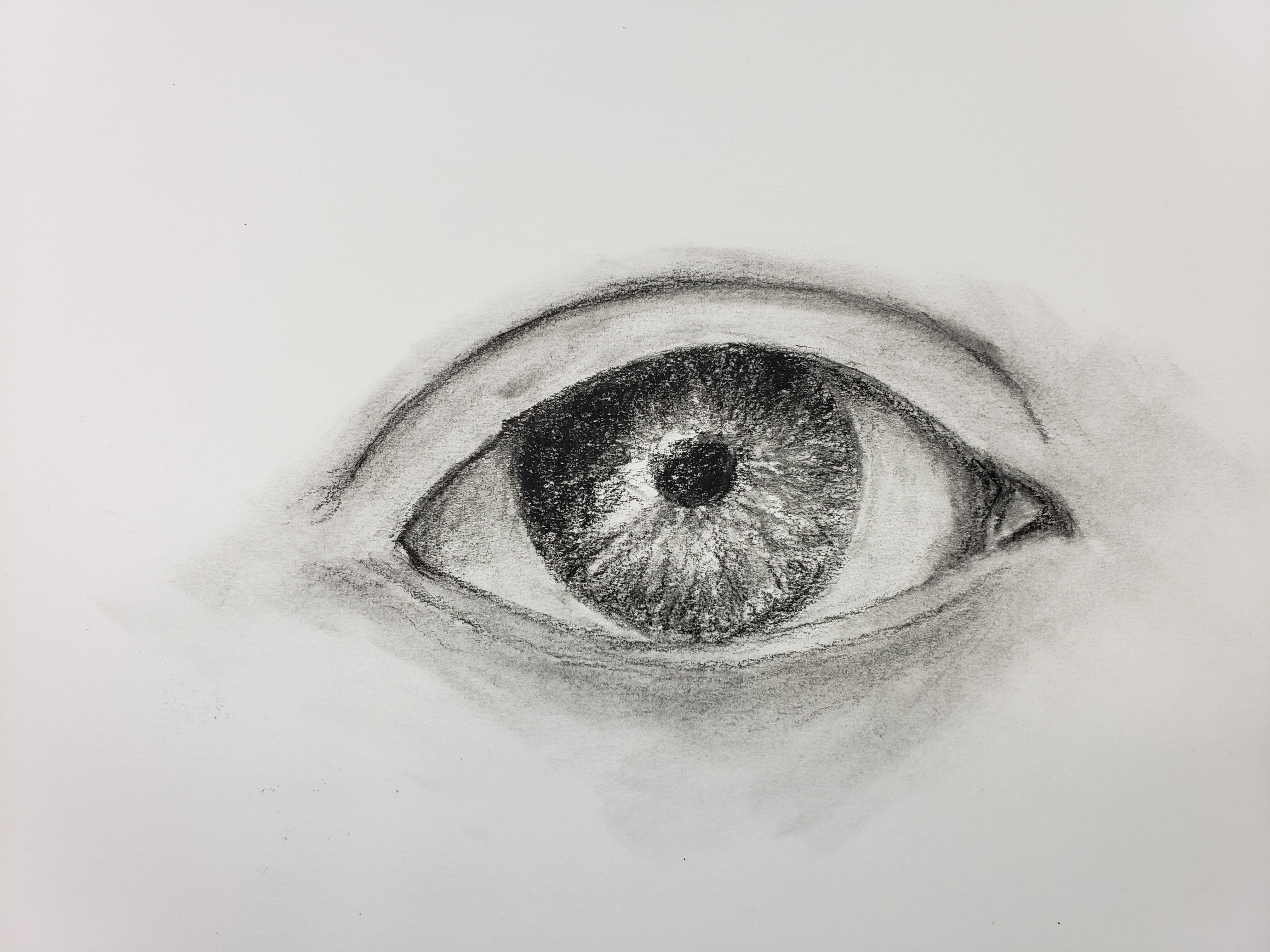 Tutoriel Comment Dessiner Un œil De Maniere Realiste