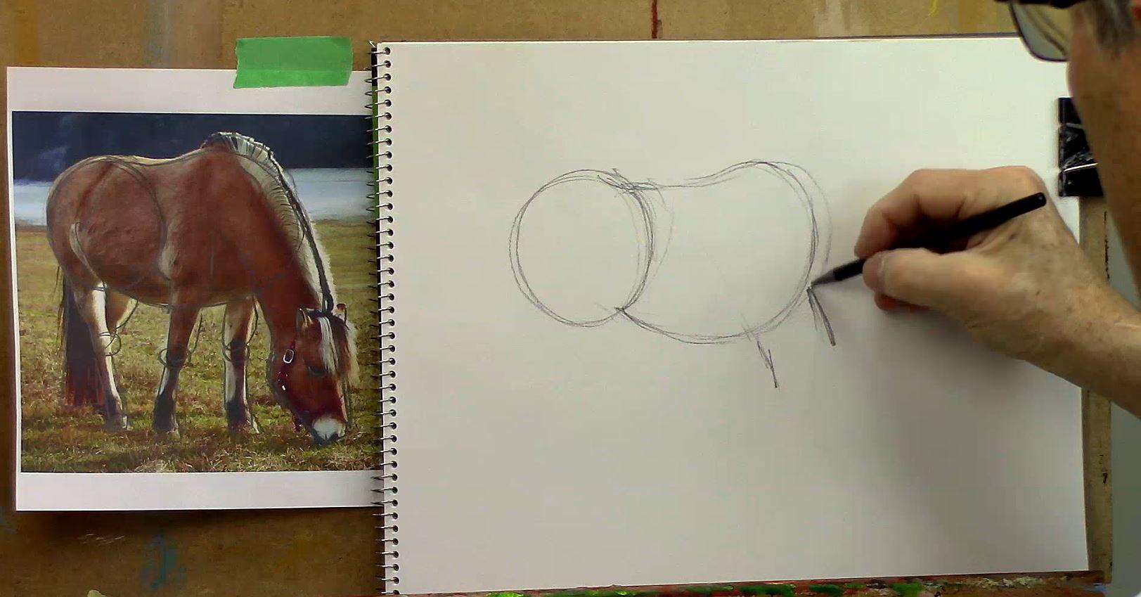Comment dessiner un cheval ?