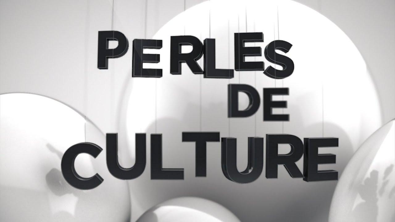 Interview en 2017 sur TV Libertés dans l'émission Perles de Culture
