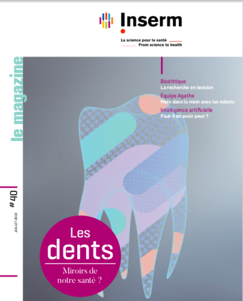 """""""Les dents - Miroirs de notre santé ?"""" Dossier INSERM"""