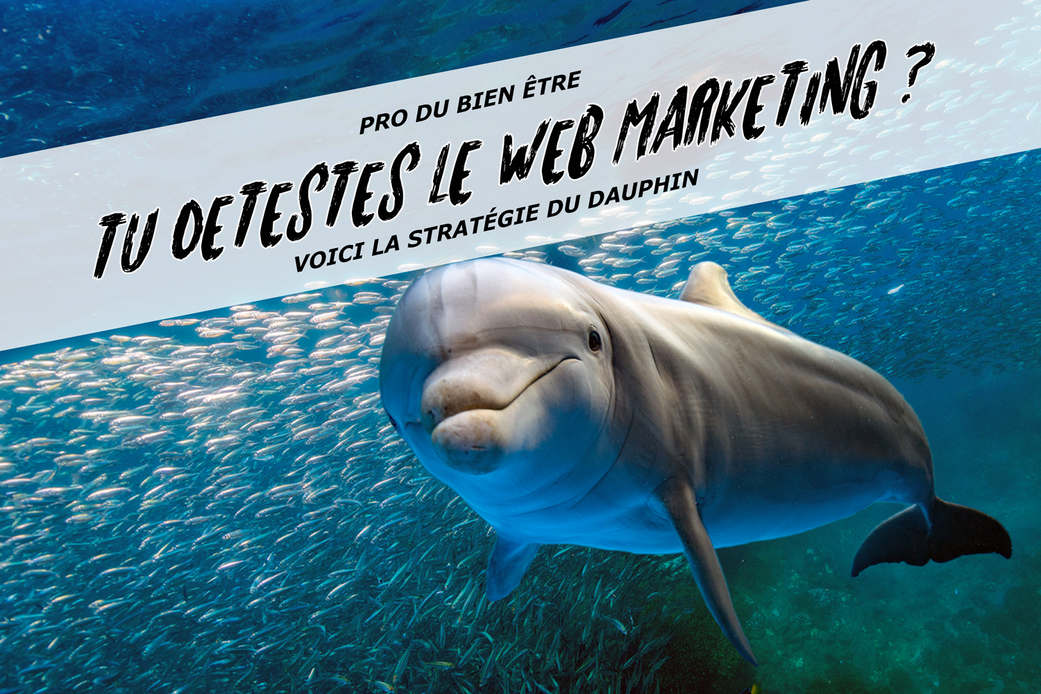 Je déteste le webmarketing