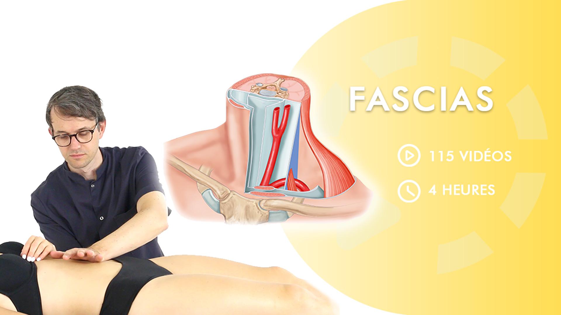 Fascias