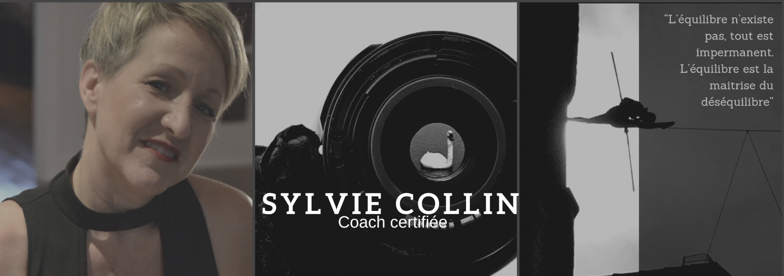 sylvie collin