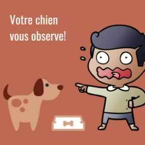 Votre chien vous observe!