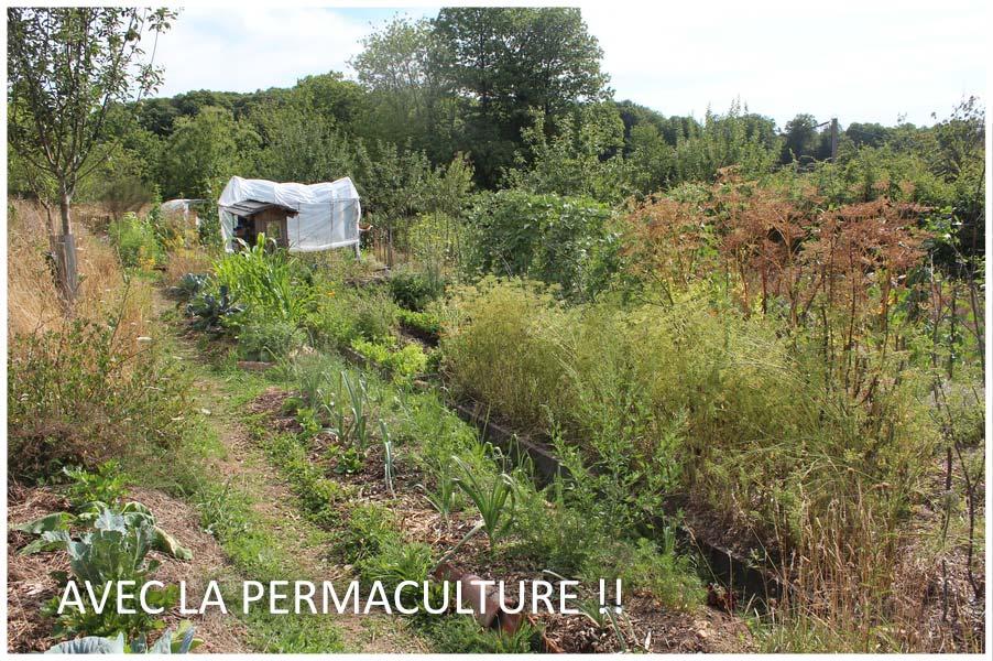 Permaculturedesign cr ez votre jardin d 39 den - La permaculture c est quoi ...