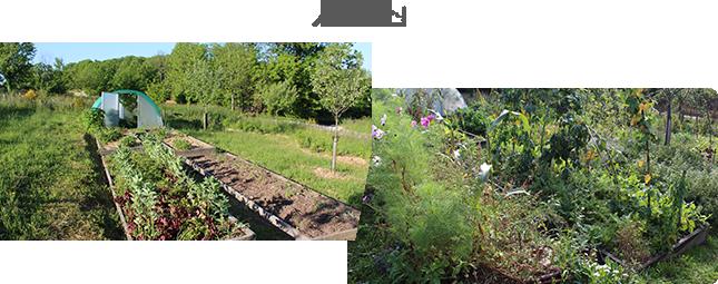 Invitez la permaculture dans votre jardin fv001pdv for Transformer son jardin
