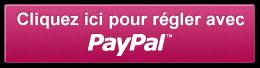 paiement_securisé_paypal