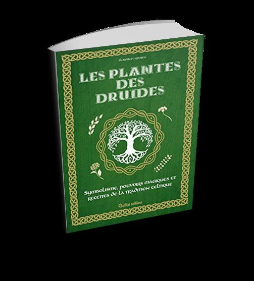 """""""Les plantes des druides"""", par Florence LAPORTE"""