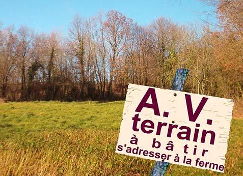 12 idées d'investissement pour les terrains vacants