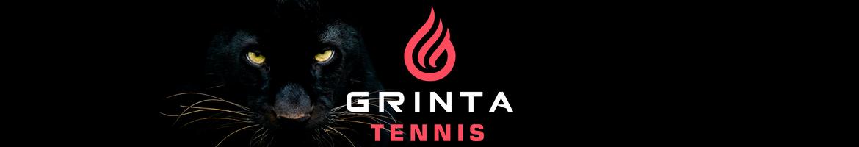 GRINTA TENNIS - Coaching, plans d'actions et stratégies mentales pour gagner plus de matchs de tennis