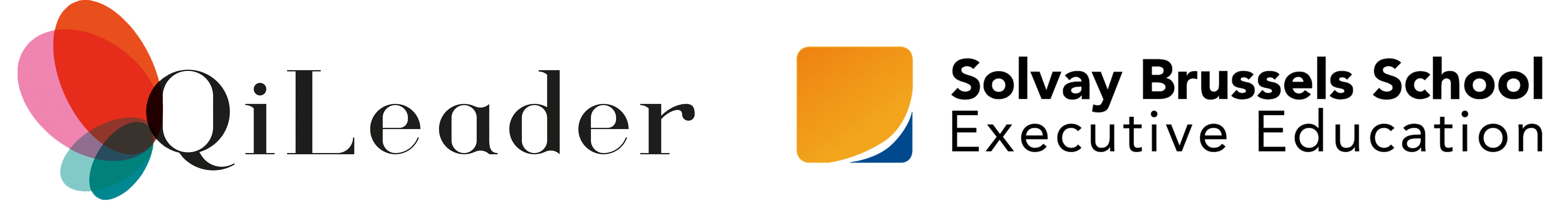 Logo qileader & logo solvay