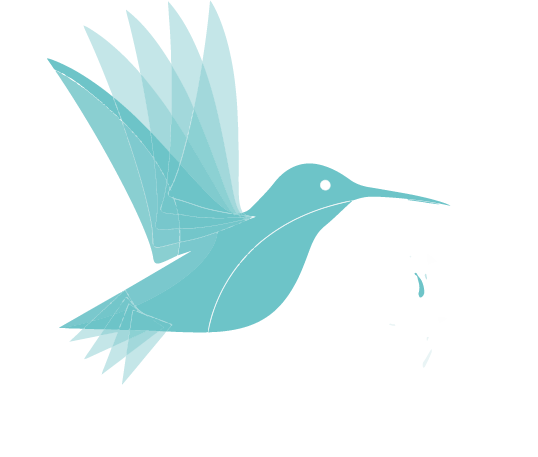 Ouvrir le site Révolution des Leaders