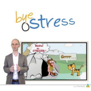 La formation offerte pour dépasser [durablement !] le stress en 5 vidéos + 1 bonus - Issue d'une vision globale systémique reconnue - Et avec Luc Rambaldi !