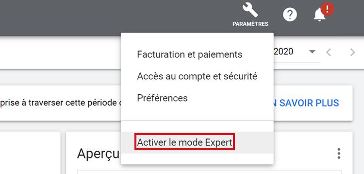 mode expert google ads