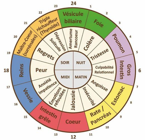Petit guide des méridiens et leurs correspondances psychologiques