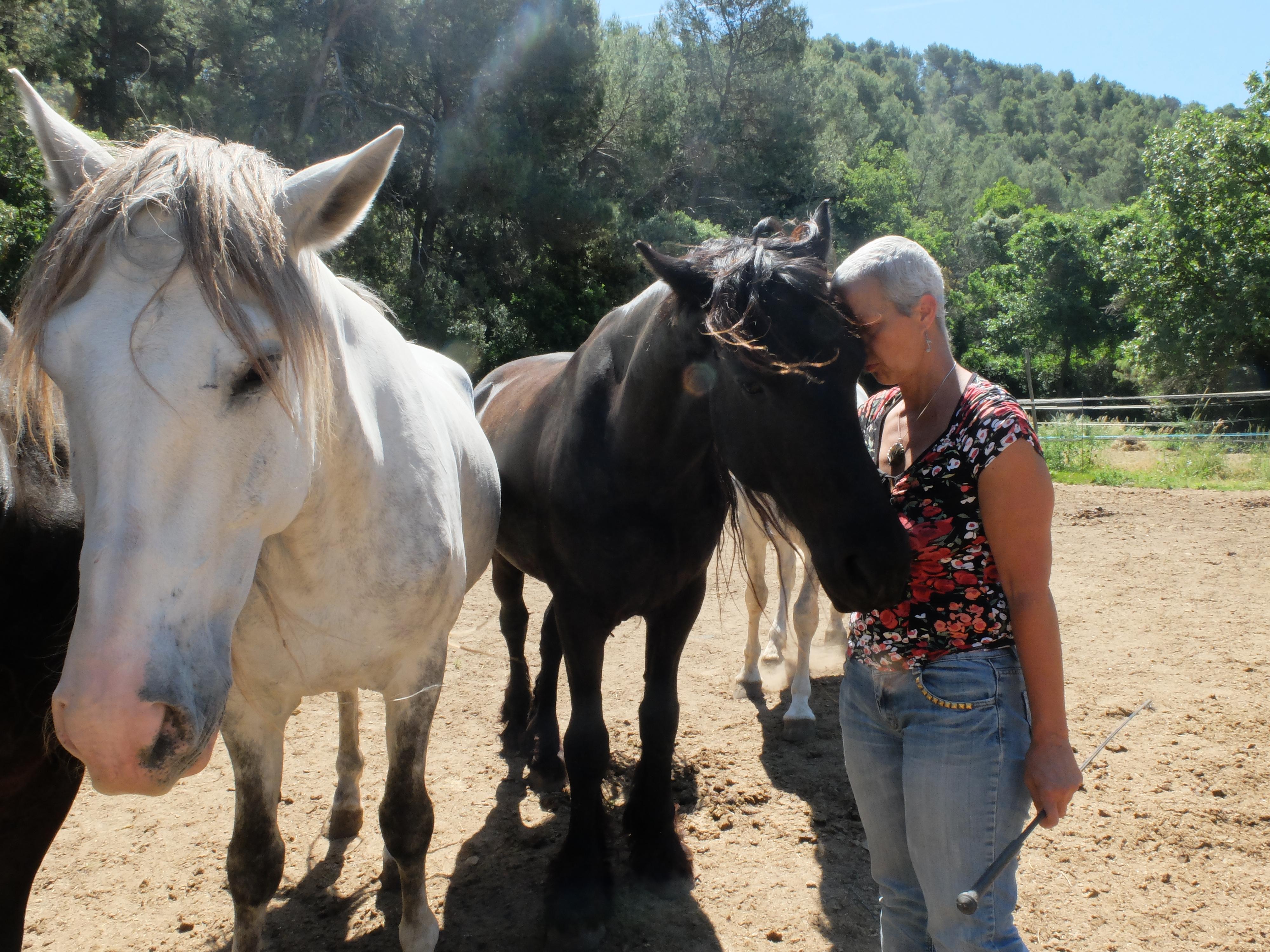 Séminaires bien-être & développement personnel en Provence