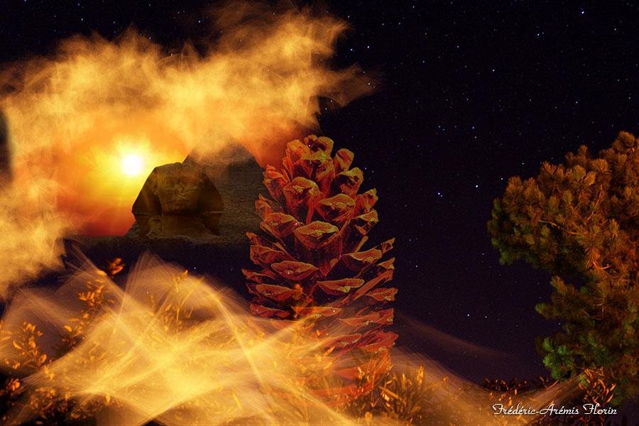 Et si la Glande Pinéale était l'arbre qui cache la forêt : Le premier Grand voyage…