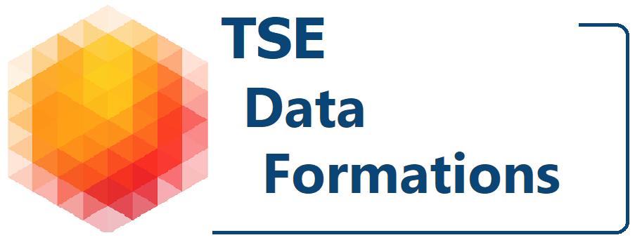 TSE Formations